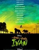 The One and Only Ivan Tek Part izle
